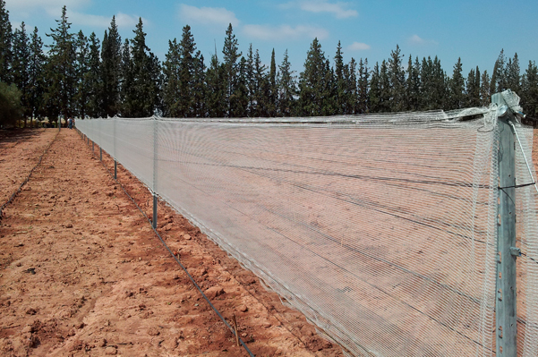 Windbreak support